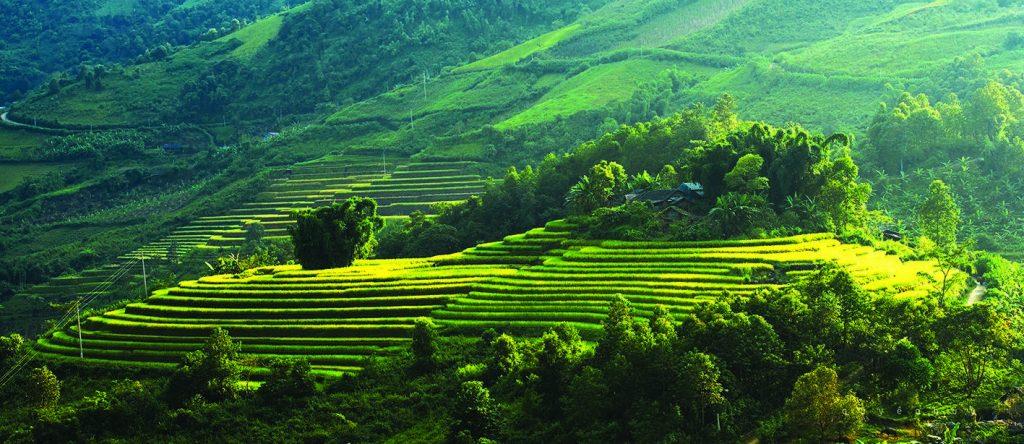 riserva-pu-luong
