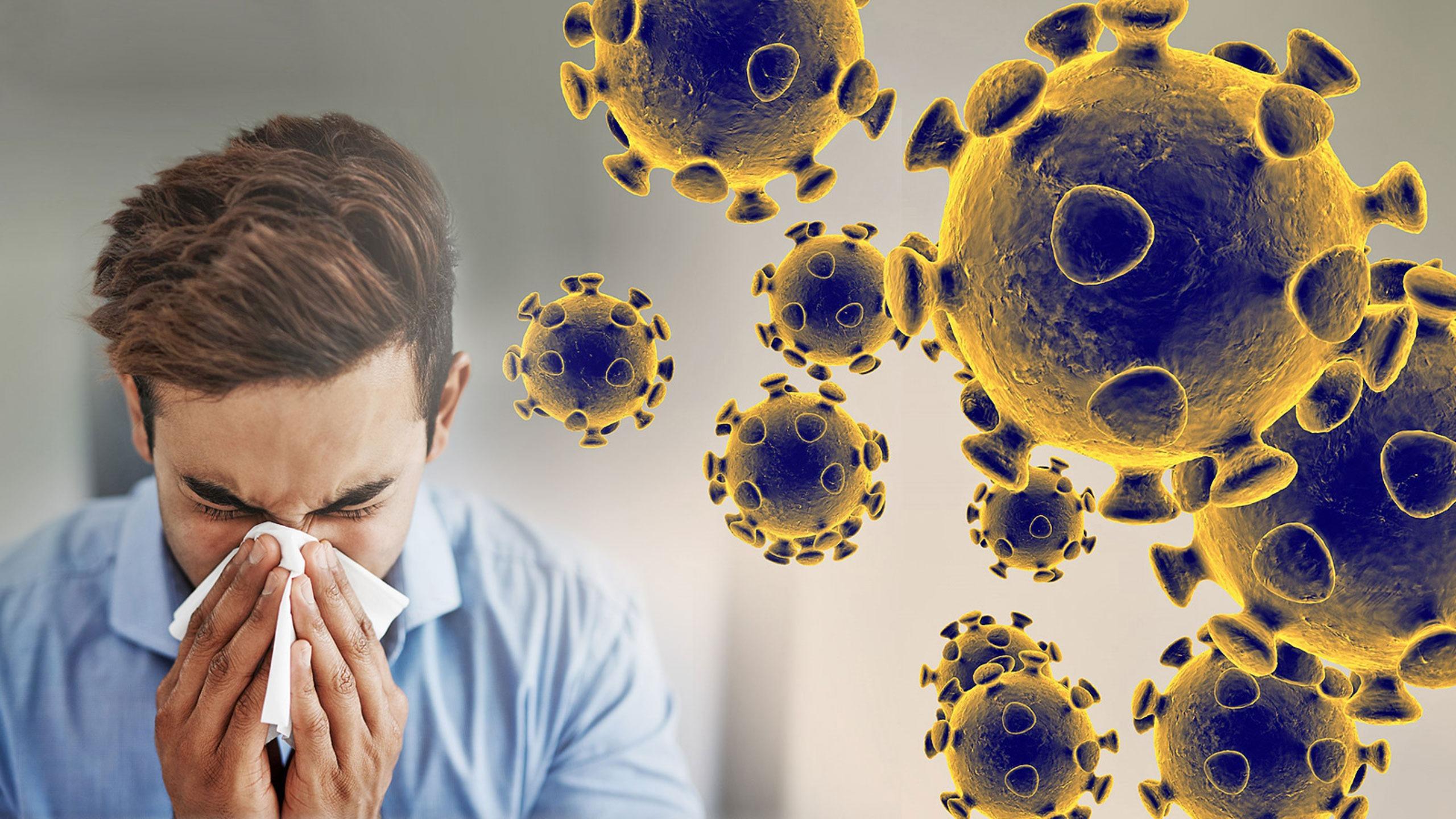 il-coronavirus